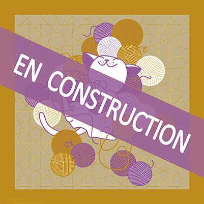 En CONSTRUCTION ViedePaschat